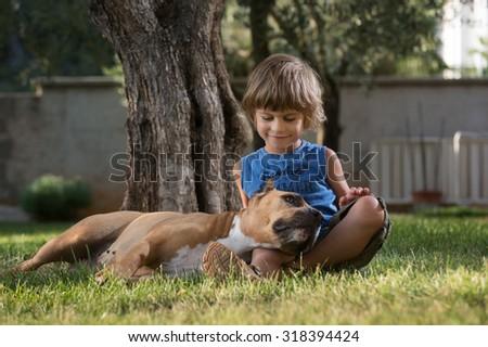 Cute little boy cuddling american staffordshire terrier lying in boy's lap. - stock photo
