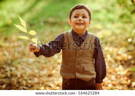 cute little boy holding a leave in his hand, autumn time, bright colors - stock photo