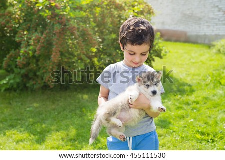 Cute little boy holds on a hands a husky puppy - stock photo