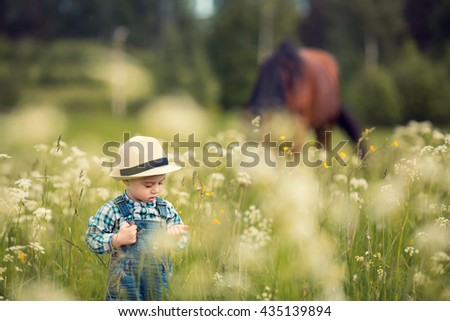 Cute little boy in straw hat in the field with a grazing horse on a background. Image with selective focus and toning - stock photo