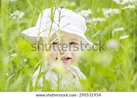 Cute little boy in the lawn with camomiles - stock photo