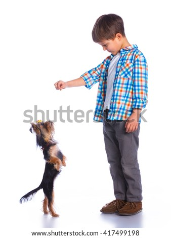 Cute little boy playing with her yorkshire terrier. Isolated on the white background - stock photo