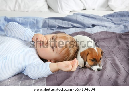 Cute little boy with funny puppy on bed at home
