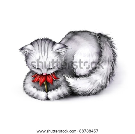 cute little cat with red flower on white background - stock photo
