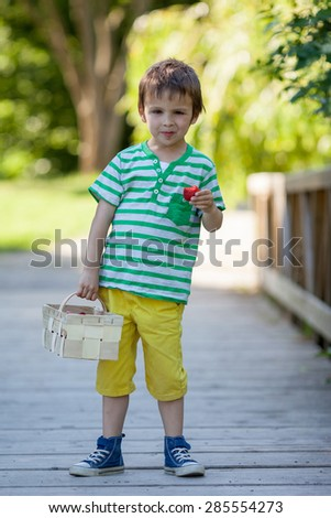 Cute little caucasian boy, eating strawberries in the park, summertime, trees around him, standing on a bridge