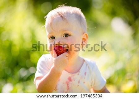 Cute little child eating strawberries, outside in backyard garden - stock photo