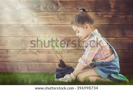 Cute little child girl cares for plants. Child holding seedling tree. Concept of spring, nature and care. - stock photo