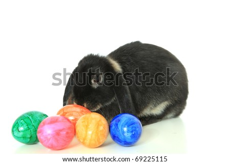 Cute little easter bunny with colored eggs. All on white background.