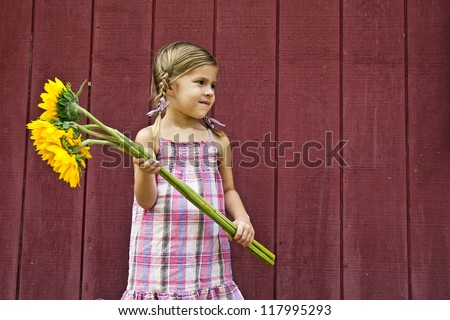 Cute little farm girl holding bouquet of sunflowers in front of red barn