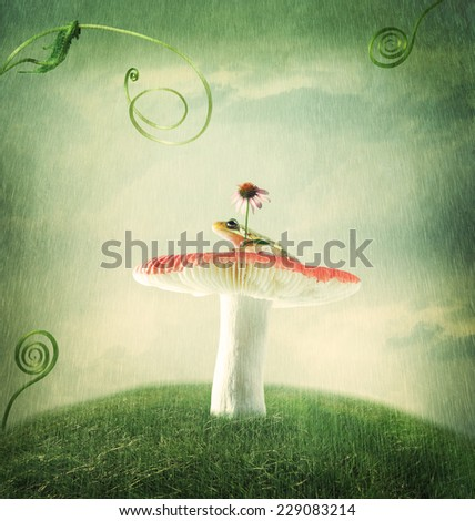 Cute little froggy on the magical mushroom - stock photo