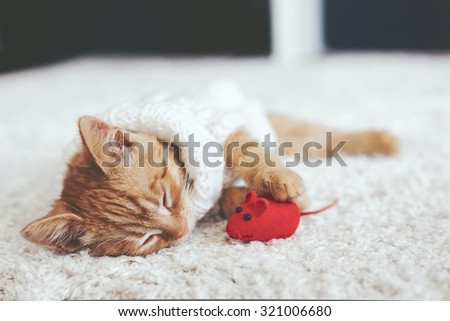 Cute little ginger kitten wearing warm knitted sweater is sleeping with pet toy on white carpet - stock photo