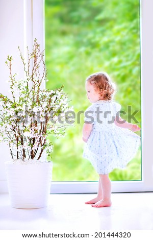 Cute little girl, funny toddler with curly hair wearing a blue festive dress, dancing and playing at a cherry blossom tree at home in a white sunny living room with a big garden view window - stock photo