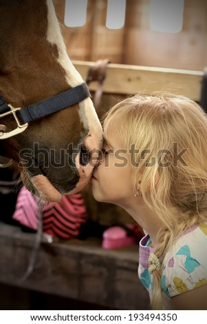 Cute little girl petting the horse  - stock photo