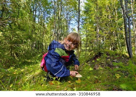Cute little girl picking mushrooms in summer forest, kids summer outdoor activities - stock photo