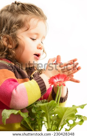 Cute little girl playing with flowers, arranging and admiring them, studio shot, isolated on white. Children's play. Childhood