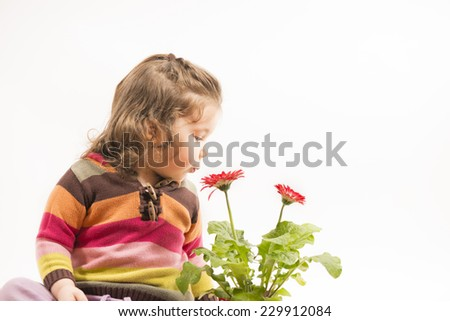 Cute little girl playing with flowers, blowing and smelling them, studio shot, isolated white background - stock photo