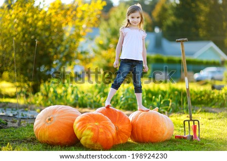 Cute little girl standing on huge pumpkins on a pumpkin patch - stock photo
