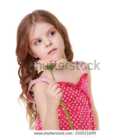 Cute little girl wearing a summer dress holding a fresh gerbera on a white background on Holiday