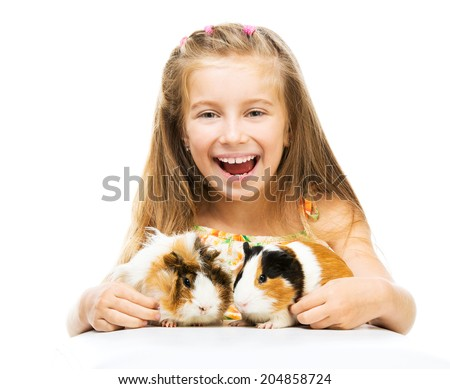 Cute little girl with two guinea pigs. Isolated on white background. - stock photo