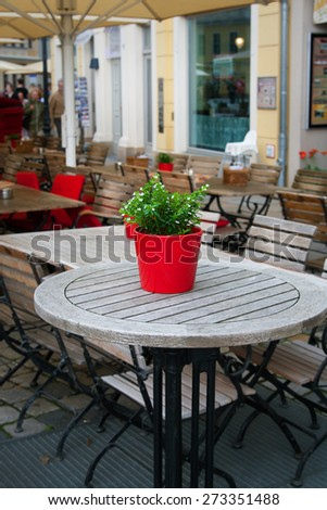 Cute little pot plant on outdoor table cafe - stock photo
