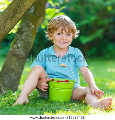Cute little preschool kid boy eating raspberries in home's garden, outdoors. Sitting on ground with big buckets with berries. - stock photo