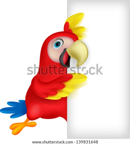 Cute macaw with blank sign - stock photo