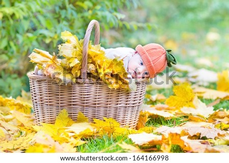 Cute newborn baby in a basket full with yellow maple leaves in a