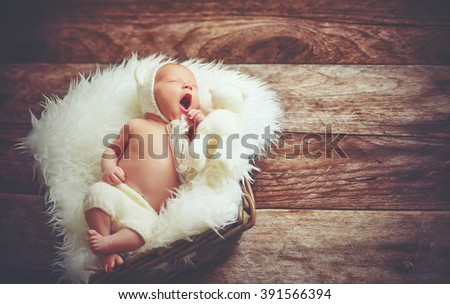 Cute newborn baby in hat sleeps  in basket with a toy teddy bear white - stock photo