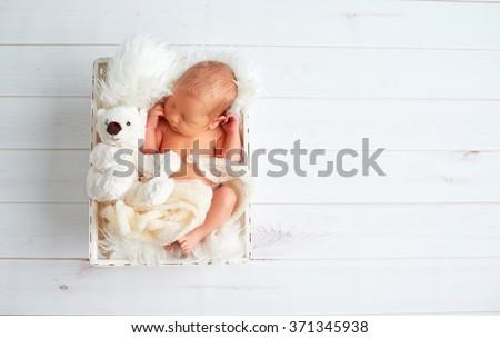 Cute newborn baby sleeps with a toy teddy bear in the basket - stock photo
