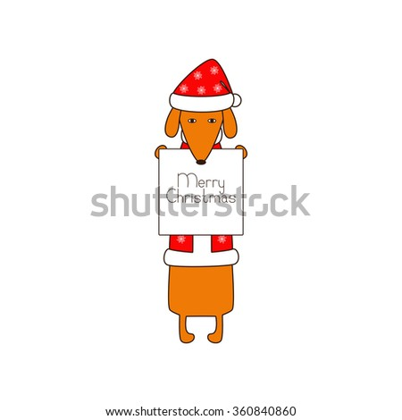 Cute orange colored brown contoured dachshund standing on hind legs in Christmas suit, red coat, hat decorated with snowflakes holding white poster with lettering Merry Christmas in dissolved forelegs - stock photo