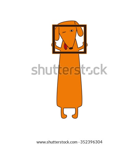 Cute orange colored brown contoured dachshund with protruding tongue, one eye closed and one opened standing on hind legs and holding empty frame in forelegs - stock photo