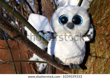 Cute owl toy on the branch of tree. Funny background.