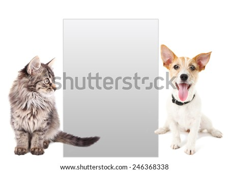 Cute pets with frame for text isolated on white - stock photo