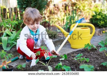 Children gardening stock images royalty free images for Gardening tools preschool
