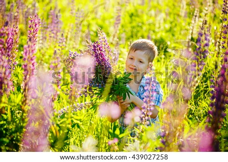 Cute preschool child in violet lupines flowers field, holding a bouquet of wild flowers, smiling - stock photo