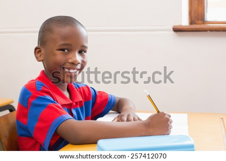 Cute pupil smiling at camera in classroom at the elementary school - stock photo