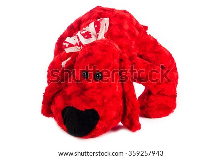 Cute puppy red toy on white