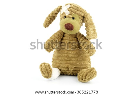 Cute puppy with medical tape on the head and bandage on the leg, pediatric or pet health conceptual  - stock photo
