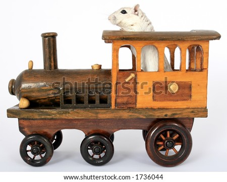 Cute rodent driving a train