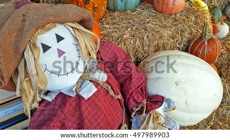 cute scarecrow with white and orange autumn pumpkins on hay bale