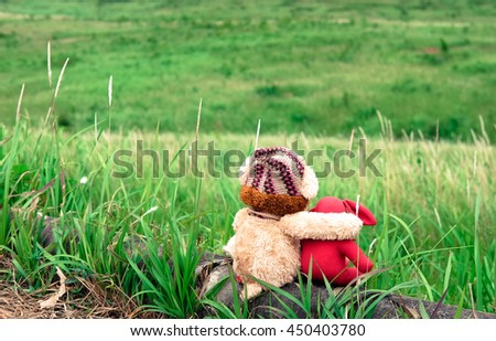 Cute teddy bear and red rabbit doll sitting on the beautiful meadow with love. Concept thinking about love and relationship - stock photo