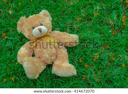Cute Teddy bear on green grass background with copy space