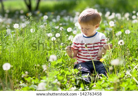 cute three year old boy with dandelions - stock photo