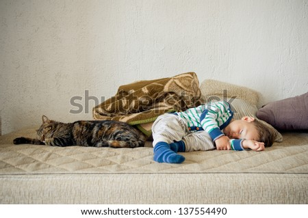 Cute toddler boy and cat sleeping together - stock photo