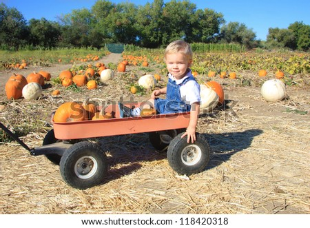 Cute toddler boy sitting in a red wagon being pulled through a pumpkin patch. - stock photo