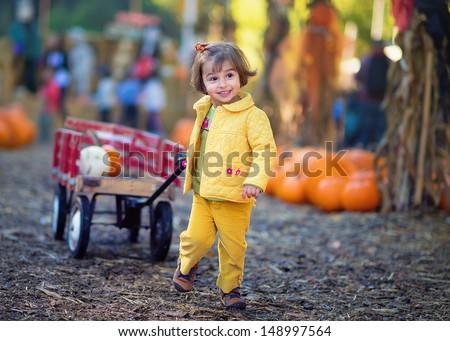 Cute Toddler Girl At a Pumpkin Patch