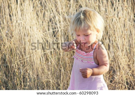 cute toddler girl in yellow field grass