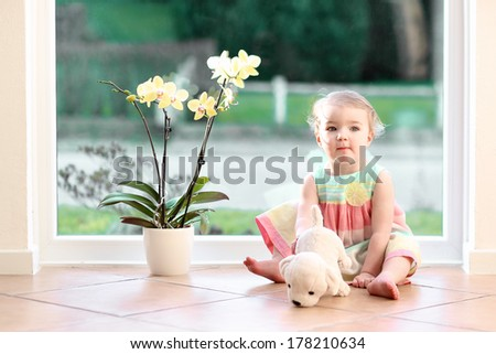 Cute toddler girl with blond curly hair playing indoors with puppy toy sitting on tiles floor in white sunny room next to big street view window with beautiful orchid in the pot - stock photo