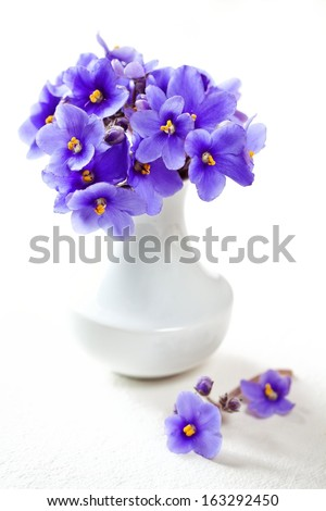 cute violet flowers in a white vase - stock photo