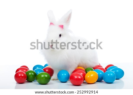 Cute white easter bunny among colorful eggs - isolated - stock photo
